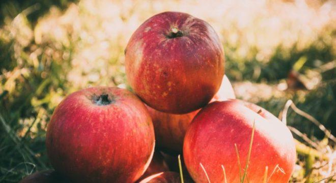 Apfelfest in Lanzerath